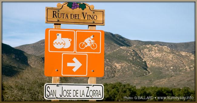 Ruta Del Vino Picture Loading...